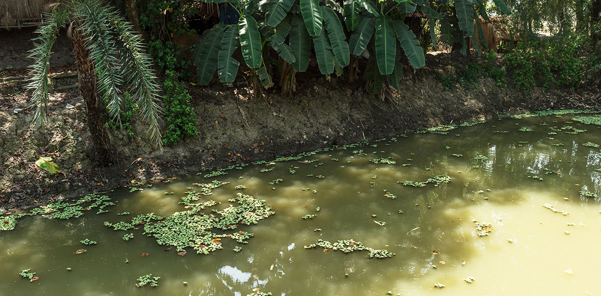 Many people in Asia draw water from smelly, vile ponds